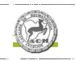 Societat Catalana de Reumatologia - ACM